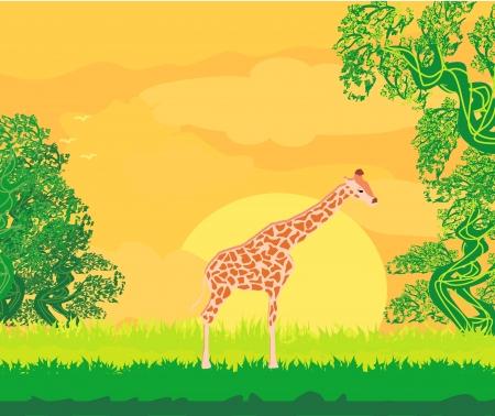 mara: Giraffe in jungle landscape  Illustration