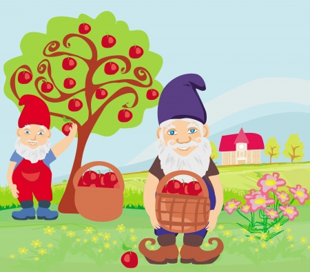 dwarfs: two dwarfs and apple tree Illustration