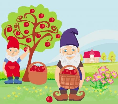 dwarfs: two dwarfs and apple tree Illustration