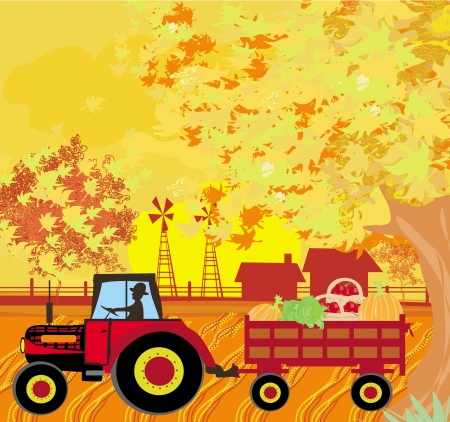 autum: man driving a tractor with a trailer full of vegetables in autum Illustration