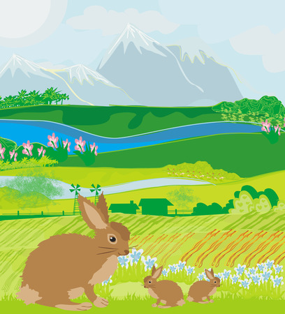 bunnies in green meadow  Vector