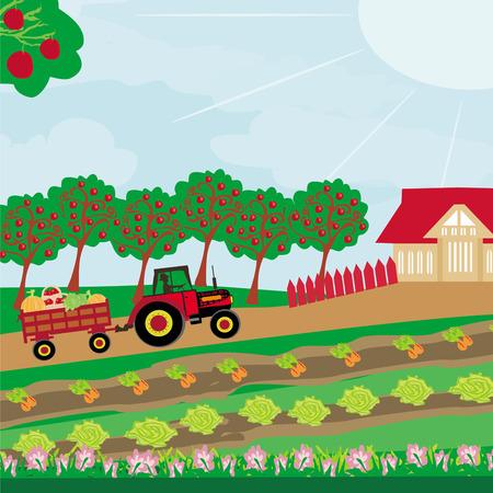 rurale landschap - trekker en boomgaard