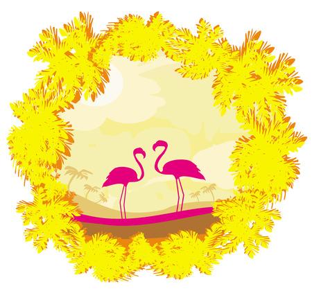 nature landscape: Flamingo couple in wild nature landscape