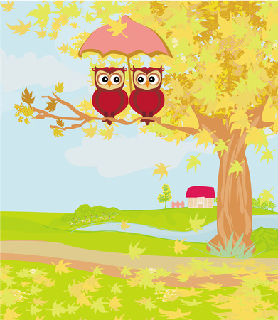 Owls couple under umbrella, autumn day  Vector