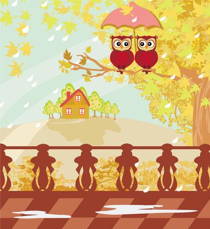 Owls couple under umbrella, autumn day  Vector