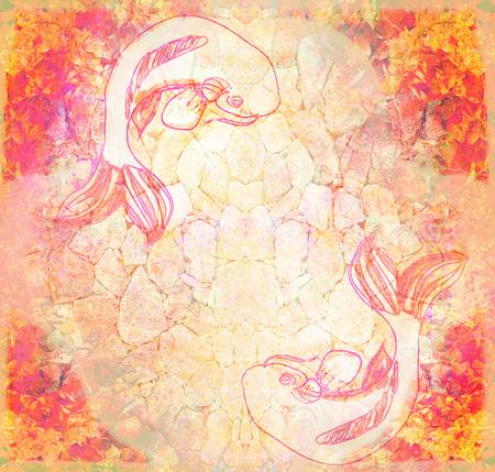 koy carp: Japanese koi fish grunge background