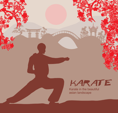 bjj: man training karate