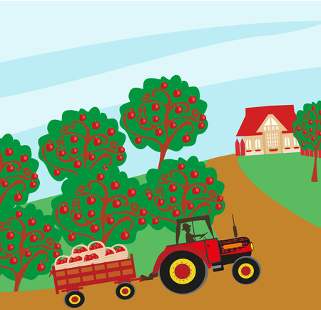 barn wood: landscape with apple trees and man driving a tractor with a trailer Illustration