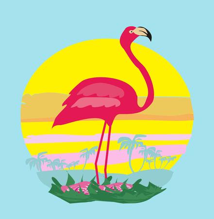 beach sunset: sunset and pink flamingo
