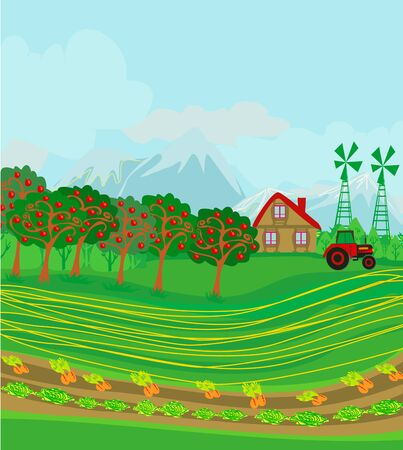 rural landscape with carrot and lettuce