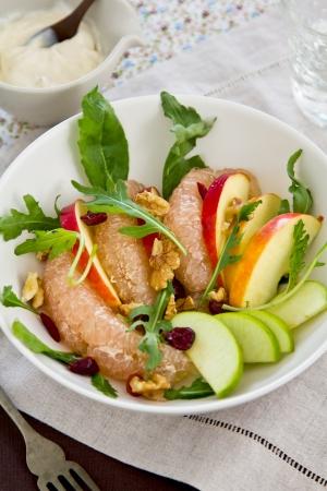 Apple Grapefruit and rocket salad Stock Photo - 14411703