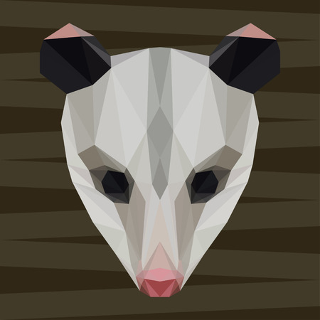 Abstract polygonal geometric triangle opossum background for use in design for card, invitation, poster, banner, placard or billboard cover 矢量图像