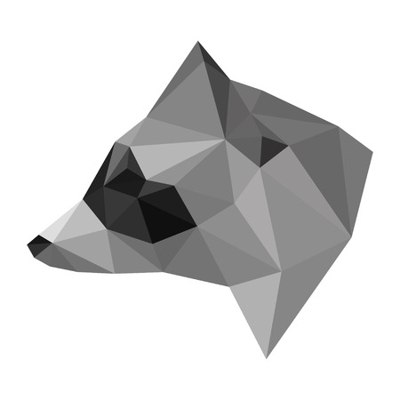 Abstract polygonal geometric triangle raccoon head isolated on white background for use in design for card, invitation, poster, banner, placard or billboard cover