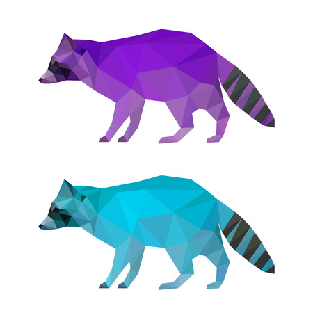 Abstract polygonal geometric triangle bright purple and blue colored raccoon set isolated on white background for use in design for card, invitation, poster, banner, placard or billboard cover