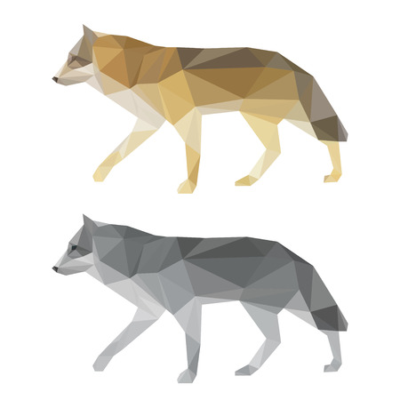 wolf: Abstract polygonal geometric triangle wolf set isolated on white background for use in design for card, invitation, poster, banner, placard or billboard cover Illustration