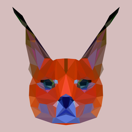 bellow: Abstract geometric polygonal lynx vector background for use in design for card, invitation, poster, banner, placard or billboard cover Illustration