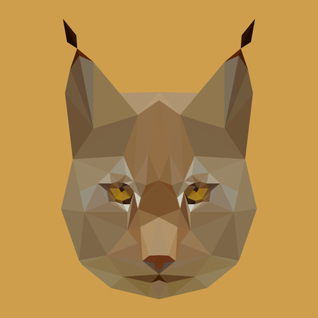 bellow: abstact geometric olygonal lynx vector background for use in design for card, invitation, poster, banner, placard or billboard cover