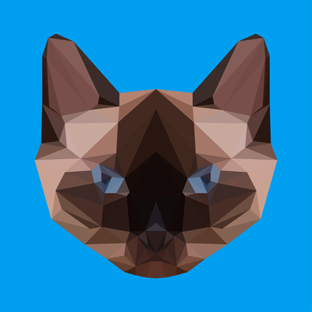 stare: abstract geometric polygonal siamese cat vector background for use in design for card, invitation, poster, banner, placard or billboard cover