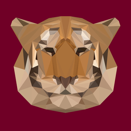 bellow: Abstract geometric polygonal tiger vector background for use in design for card, invitation, poster, banner, placard or billboard cover