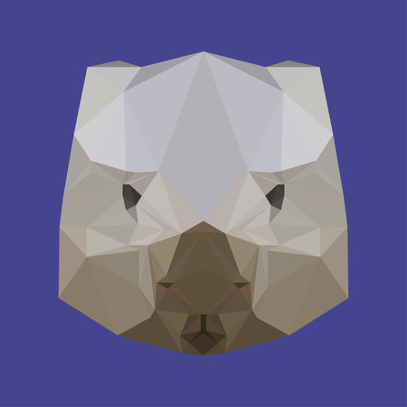 nibble: abstract geometric polygonal wombat vector  background