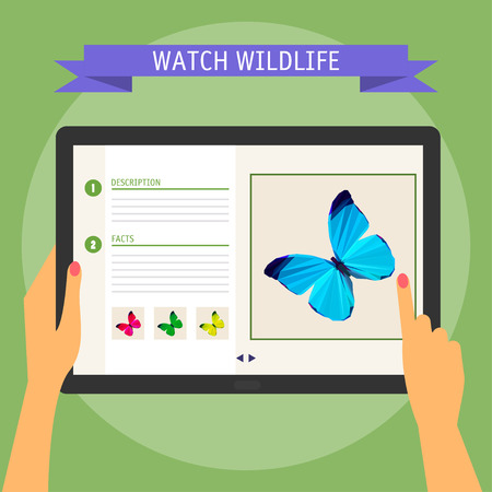 Vector illustration concept of hands holding modern digital tablet and pointing on a screen with website about wildlife. Flat design style, isolated on soft green colored background with slogan Vector