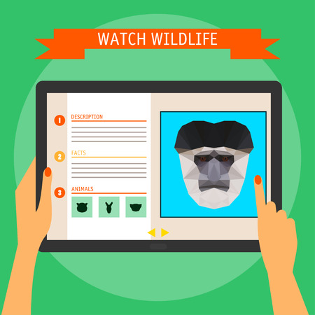 digital tablet: digital tablet with colobus monkey cartoon portrait and website about wildlife. Illustration in trendy flat style, isolated on bright stylish green background with slogan for use in design