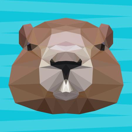 groundhog: Groundhog abstract polygonal portrait Illustration