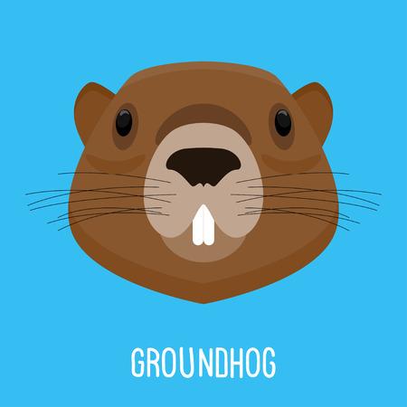Groundhog portrait
