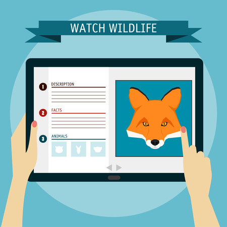 wildlife: Fox cartoon portrait and website about wildlife. Digital tablet.