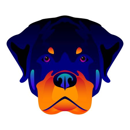 Abstract rottweiler dog head isolated on white. Graphic cartoon rottweiler dog portrait painted in imaginary colors for design card, invitation, banner, book, scrapbook, t-shirt, poster etc.