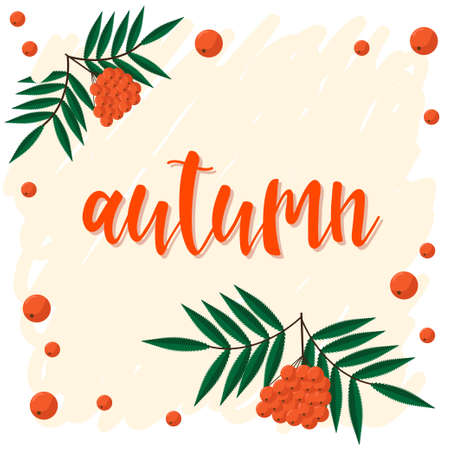 Autumn. Hand drawn lettering and autumn rowan for design card, school poster, childish t shirt, autumn banner, scrapbook, album, school wallpaper etc Illustration