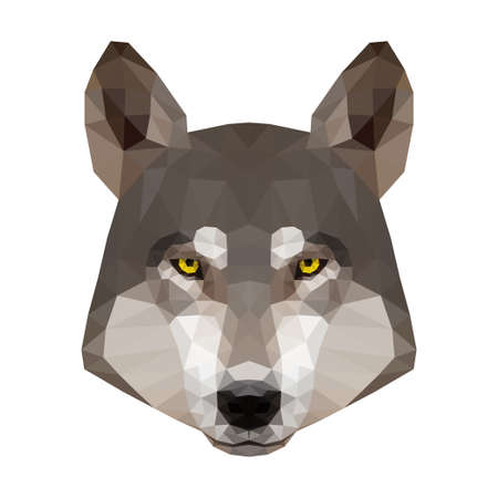 Abstract polygonal wolf head. Modern low poly wolf portrait pattern