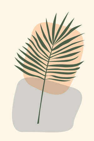 Tropical rainforest jungle exotic leaf pattern background