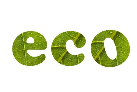 nervation: eco Stock Photo