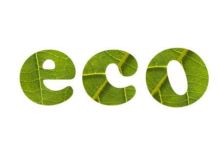 eco Stock Photo - 5338513