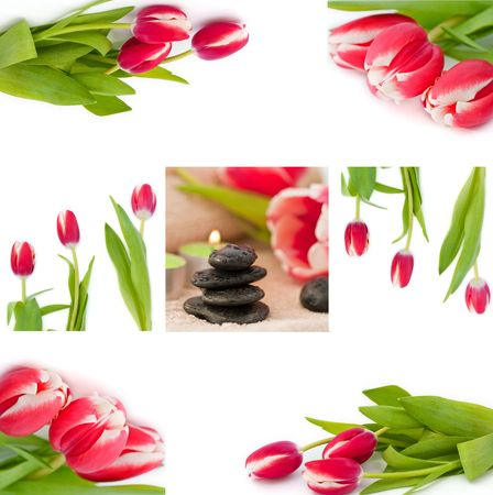 beautycare: Spring zen like SPA with red tulips Stock Photo