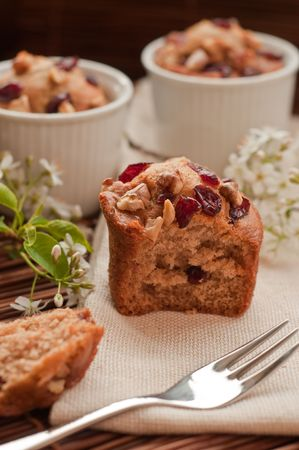 Home made muffins with wild cherries and walnunts Stock Photo - 6754642