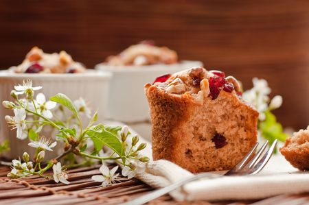 Home made cocoa muffins with wild cherries and walnunts photo