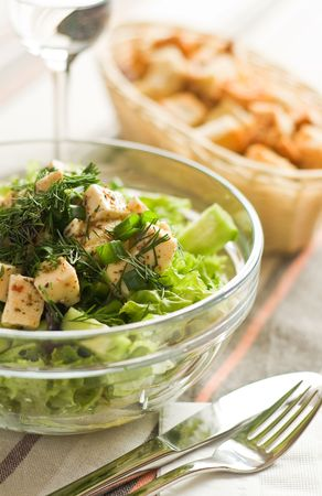 Spring green salad with homemade cheese 免版税图像