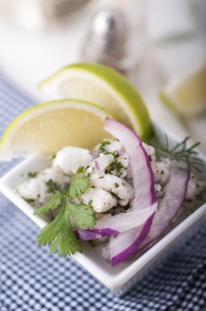 Ceviche, decorated with lime, onion and coriander