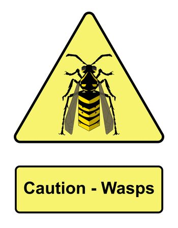 Caution wasps warning poster. vector illustration. Vector illustration