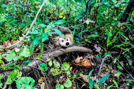 plushy: Hidden in the woods