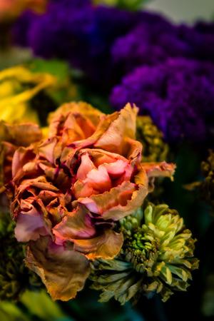 faded: Faded Beauty Stock Photo