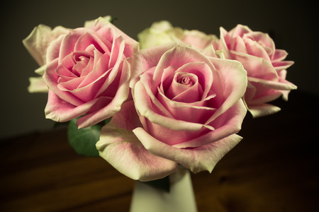 bunch up: Bunch of roses close up