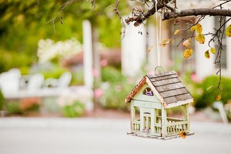 Beautiful treehouse