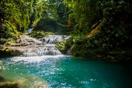 Jamaica tropical waters green paradise Imagens