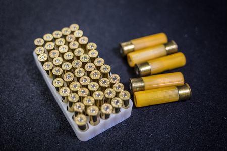 Ammunition for revolver and shotgun