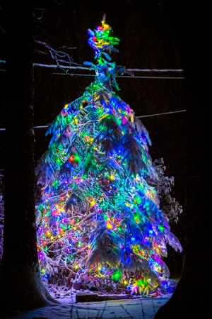 Lighted christmas tree at night decorated with snow
