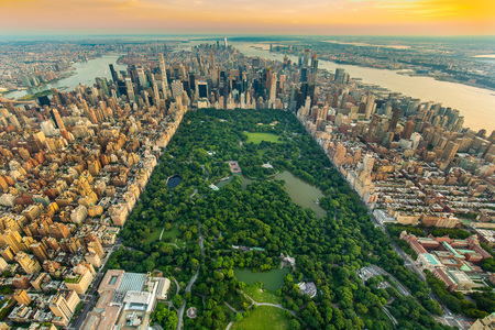 New York Central park aerial view in summer day