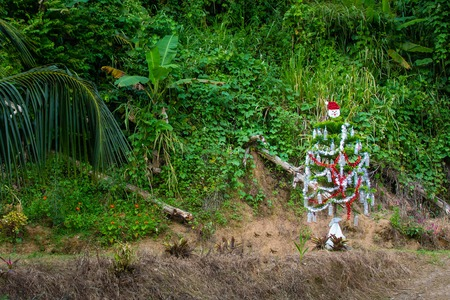 Outdoor decorated Christmas tree in the tropical climate Stock Photo